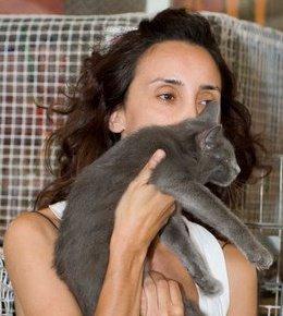 ייעוץ התנהגות חתולים - אורלי זכאי