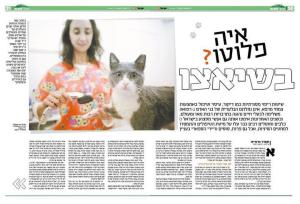 orly zakay about animal acupuncture